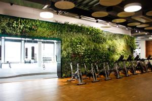 Plantevægge i træningscenter → Gamstdanplant.dk